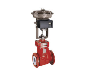 Richter  RSS Fully Lined Globe Control Valves