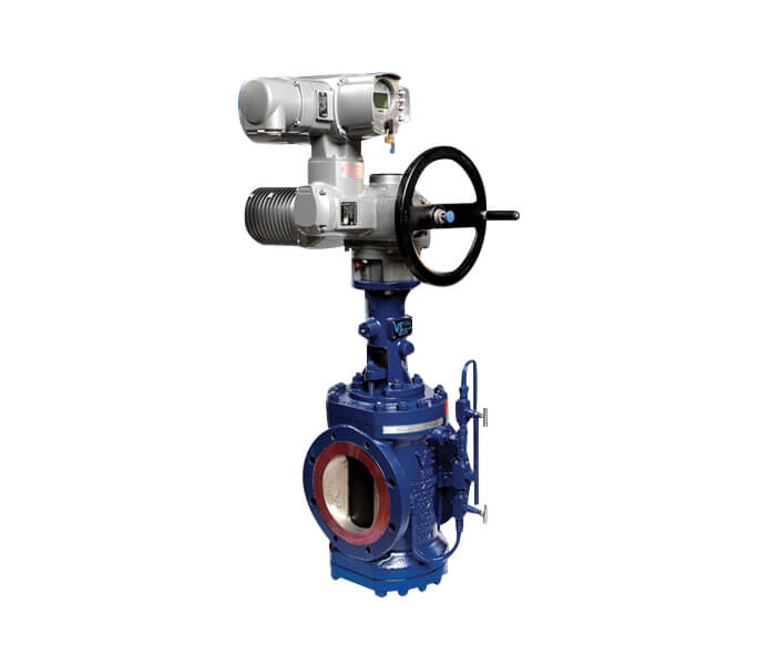VE 8211 Double Block 038 Bleed Expanding Plug Valves